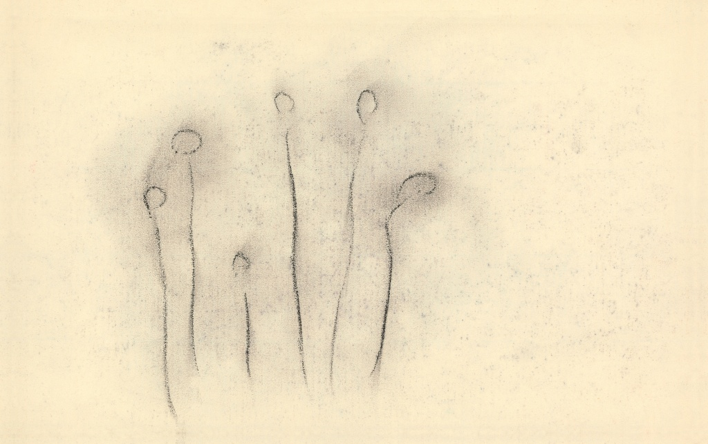 見えない花 AN VISIBLE FLOWER 1952/ 2011 Solegraph on Japanese Paper 13.0 × 20.9 cm ©Yoko Ono