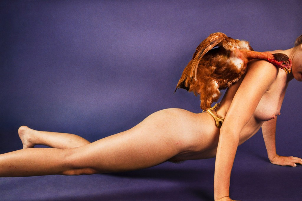 Ryan McGinley  ライアン・マッギンレー Turkin (Prism Violet) 2012 c-print 75.6 x 113.7 cm (image) / 79.8 x 117.8 x 5.0 cm (frame) © Ryan McGinley